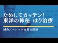 NHK「東洋の神秘 はり治療」ためしてガッテン!鍼灸特集を見た感想